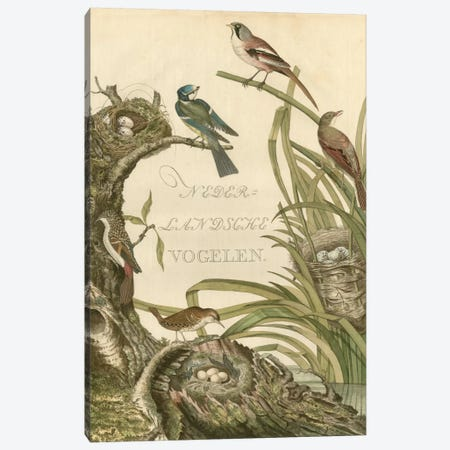 Sanctuary For Birds Canvas Print #NOZ5} by Nozeman Art Print