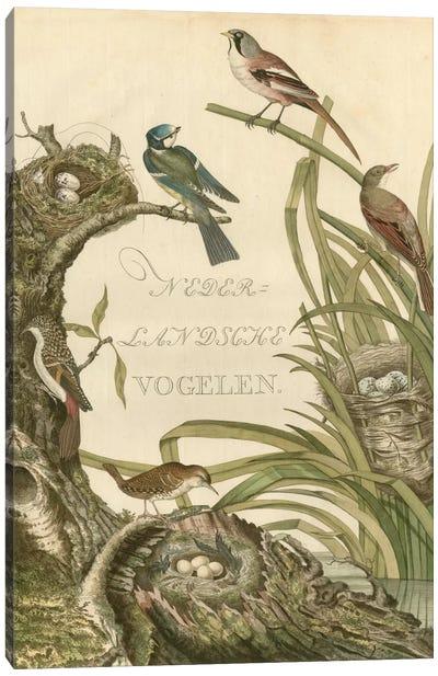 Sanctuary For Birds Canvas Art Print