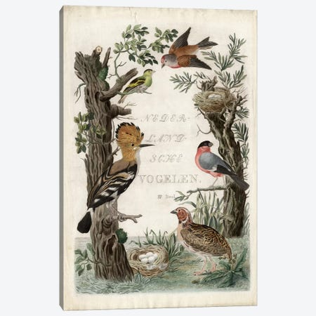 Woodpecker Sanctuary Canvas Print #NOZ6} by Nozeman Art Print