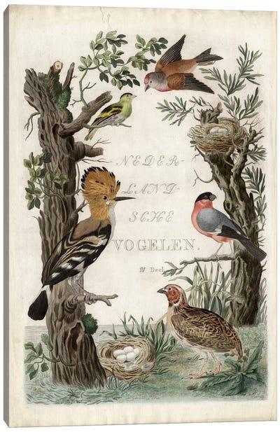 Woodpecker Sanctuary Canvas Print #NOZ6