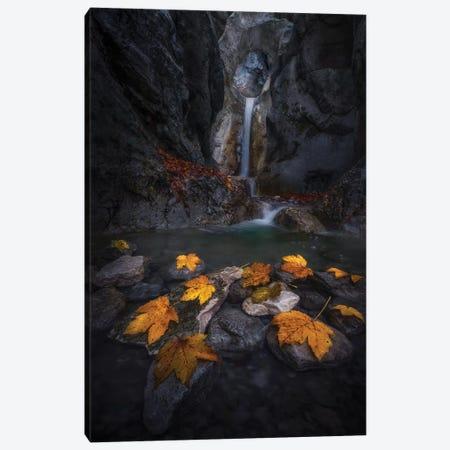 Autumn Leaves In The Gorge... 3-Piece Canvas #NPA2} by Nina Pauli Canvas Art Print
