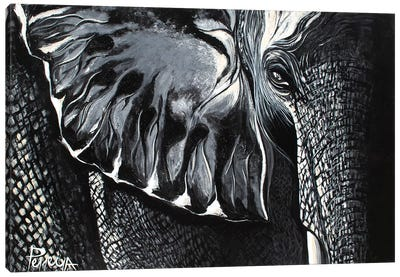 Mighty Elephant Canvas Art Print