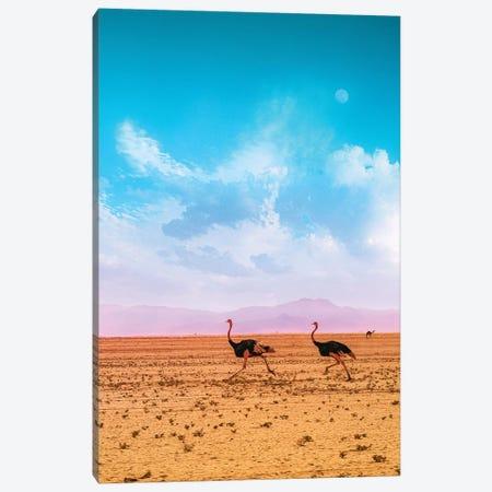 Desert Run Canvas Print #NPH10} by Nirs Photography Canvas Art