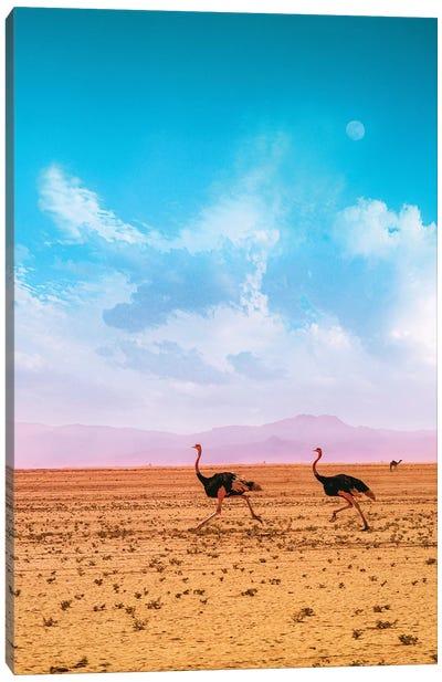 Desert Run Canvas Art Print