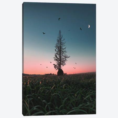 Giving Tree Canvas Print #NPH17} by Nirs Photography Canvas Art Print