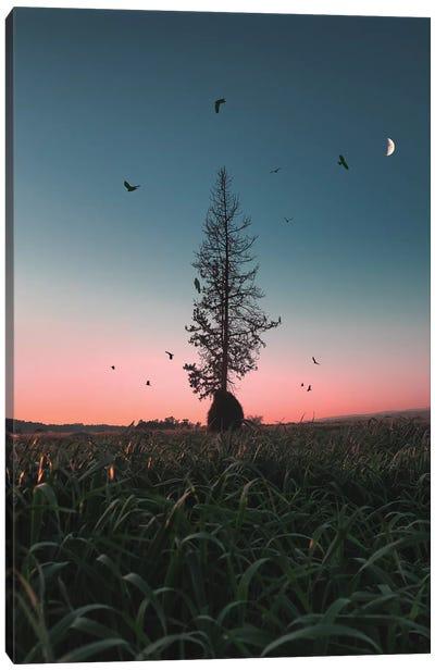 Giving Tree Canvas Art Print