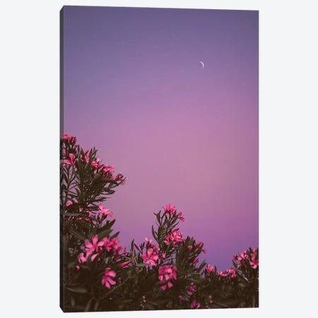 Hanging Gardens Canvas Print #NPH20} by Nirs Photography Canvas Art Print