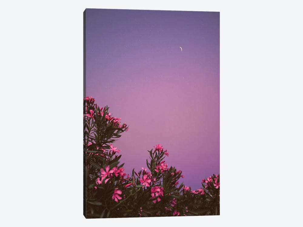 Hanging Gardens by Nirs Photography 1-piece Canvas Artwork