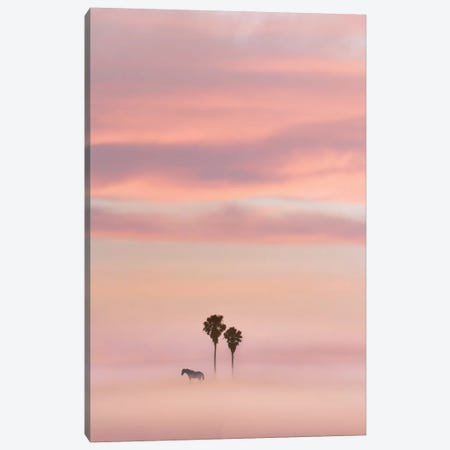 Just Another Sunset Canvas Print #NPH24} by Nirs Photography Canvas Wall Art