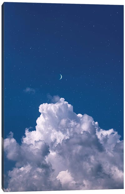 Over The Clouds Canvas Art Print
