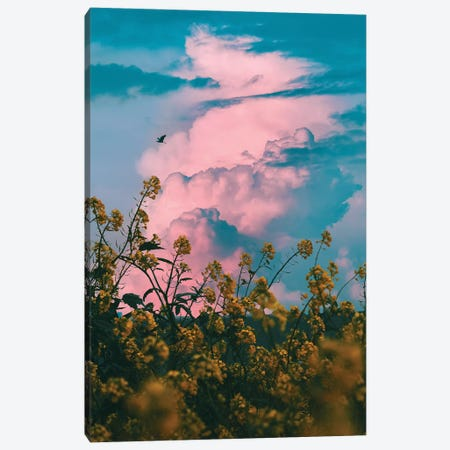 Pink Storm Canvas Print #NPH46} by Nirs Photography Canvas Wall Art
