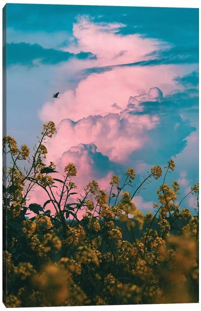 Pink Storm Canvas Art Print
