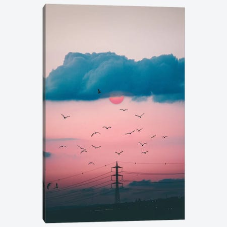 Red Sun Canvas Print #NPH49} by Nirs Photography Canvas Print