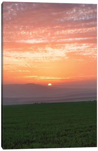 Shy Sunset Canvas Art Print