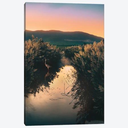 Sun Bath Canvas Print #NPH59} by Nirs Photography Canvas Artwork