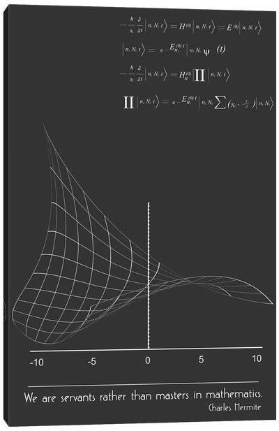 Charles Hermite Math Quote Canvas Art Print