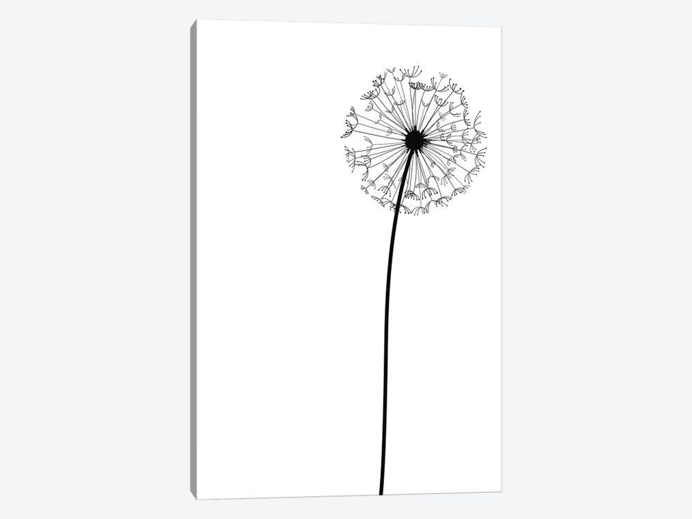 Modern Dandelion by Nordic Print Studio 1-piece Canvas Artwork