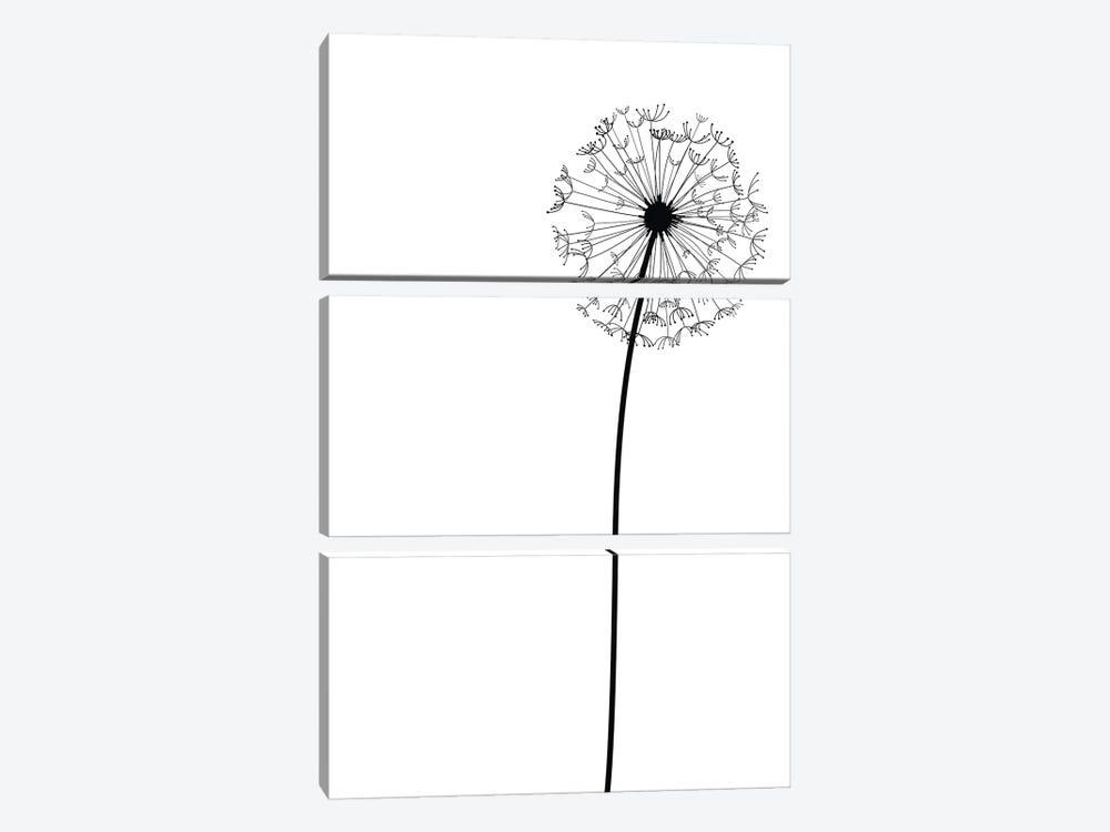 Modern Dandelion by Nordic Print Studio 3-piece Canvas Wall Art