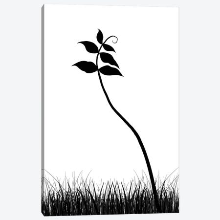 Minimalist Black & White Plant Canvas Print #NPS54} by Nordic Print Studio Canvas Artwork