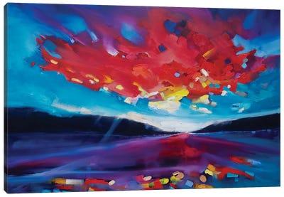 Sky Brain Canvas Art Print