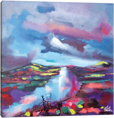 Tine (Fire In Irish. This Is A Painting Of The Forest Fires In Killarney) Canvas Art Print