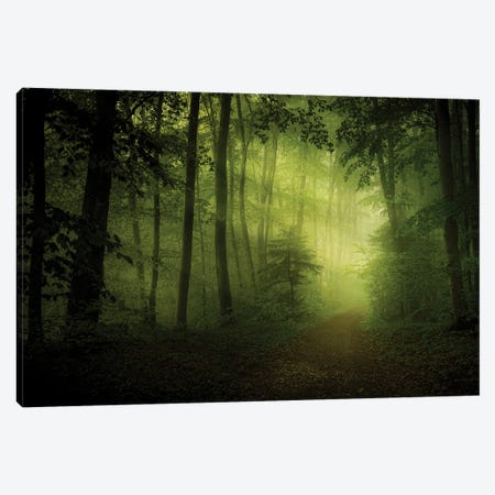 Spring Secret Canvas Print #NRB10} by Norbert Maier Art Print