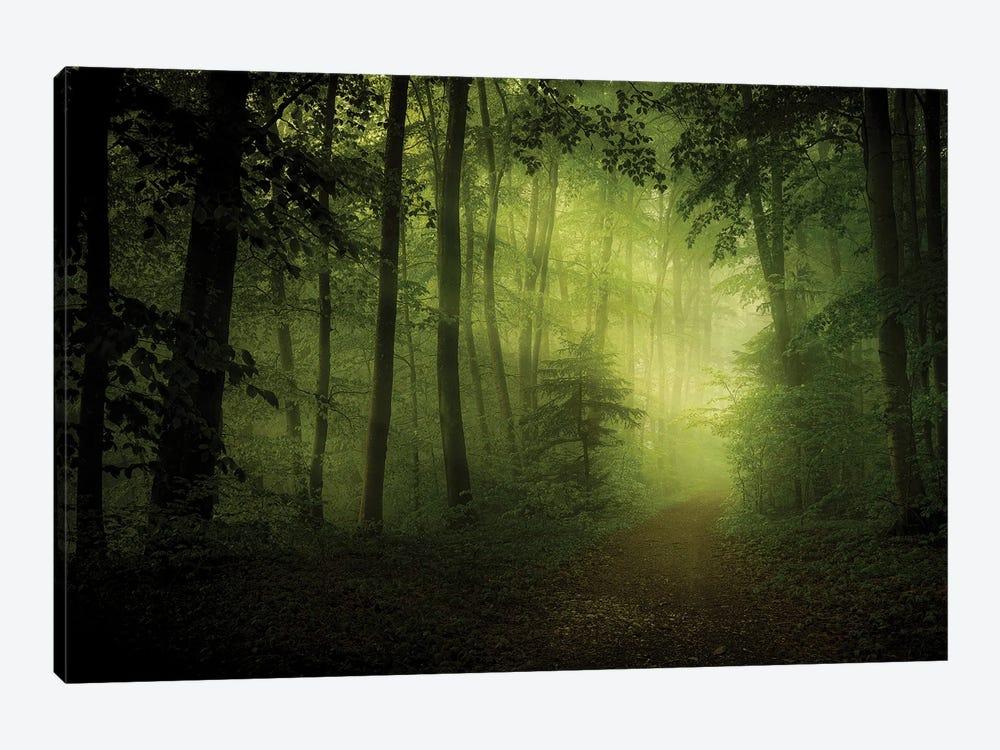 Spring Secret by Norbert Maier 1-piece Canvas Print