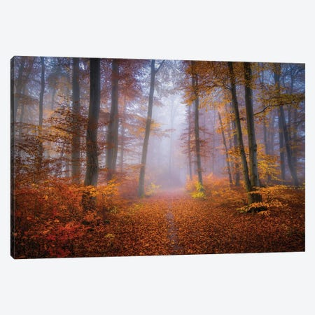 October Trail Canvas Print #NRB12} by Norbert Maier Canvas Print