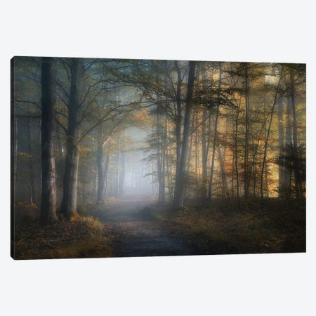 Autumn Symphony Canvas Print #NRB3} by Norbert Maier Canvas Art