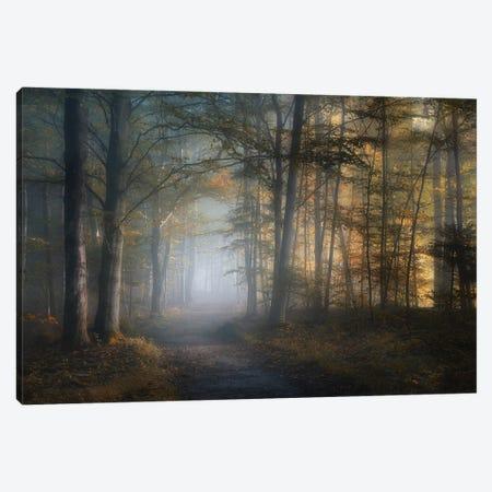 Autumn Symphony Canvas Print #NRB3} by Norbert Maier Canvas Art