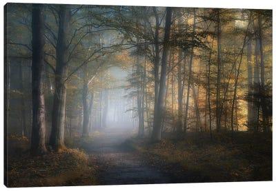 Autumn Symphony Canvas Art Print