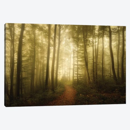 Charm Of The Ephemeral 3-Piece Canvas #NRB6} by Norbert Maier Canvas Print
