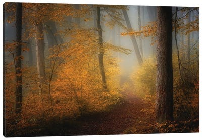 In Autumn Canvas Art Print