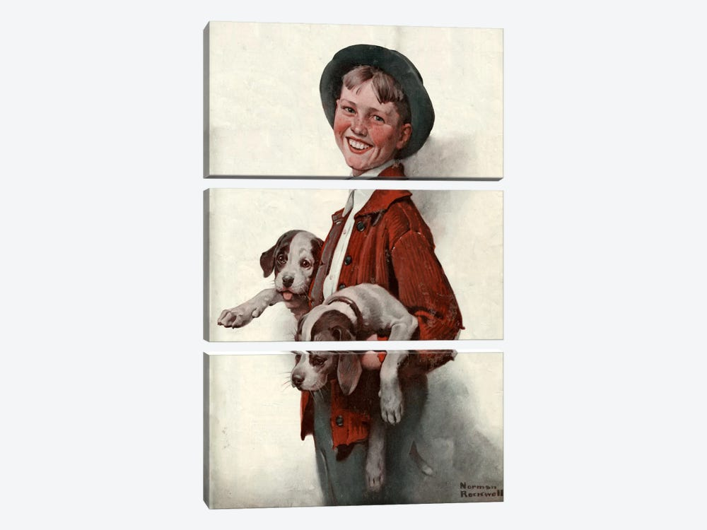 Boy with Puppies by Norman Rockwell 3-piece Canvas Art