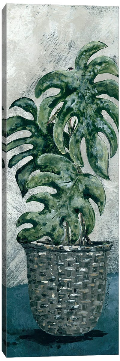 Boho Monstera Canvas Art Print