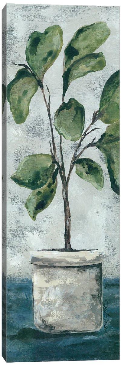 Fiddle Leaf Fig Canvas Art Print