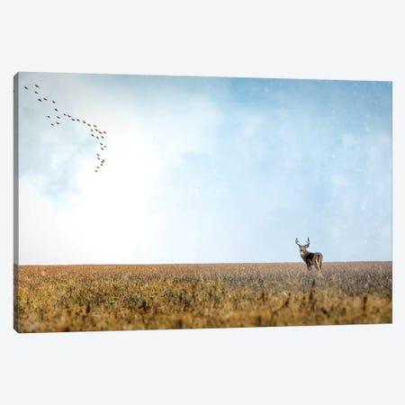 Panoramic Deer Male Canvas Print #NRV104} by Nik Rave Canvas Artwork