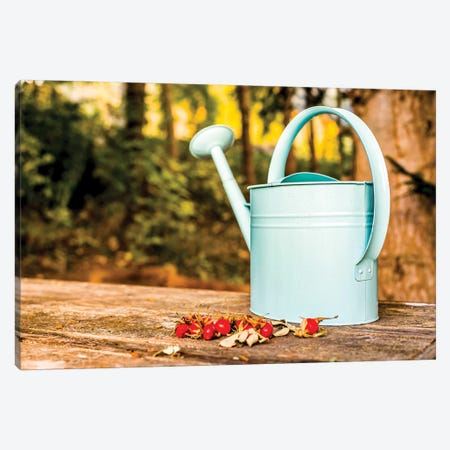 Countryside Watering Can And Wild Apples Canvas Print #NRV126} by Nik Rave Canvas Artwork
