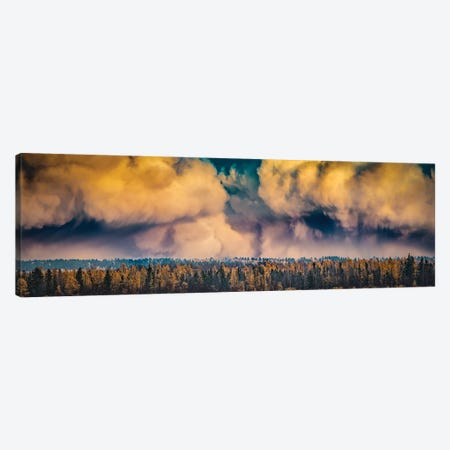 Dramatic Sky Over A Forest Canvas Print #NRV143} by Nik Rave Canvas Print