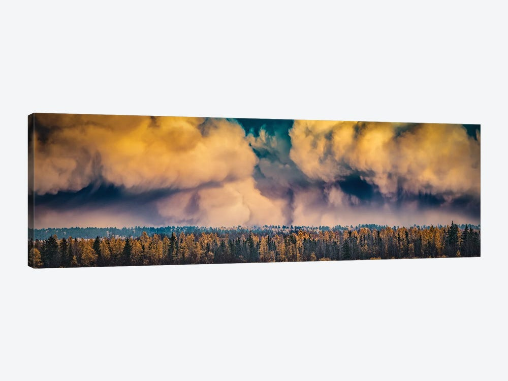 Dramatic Sky Over A Forest by Nik Rave 1-piece Canvas Artwork
