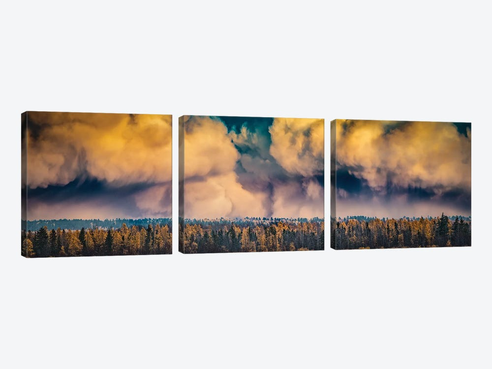 Dramatic Sky Over A Forest by Nik Rave 3-piece Canvas Wall Art