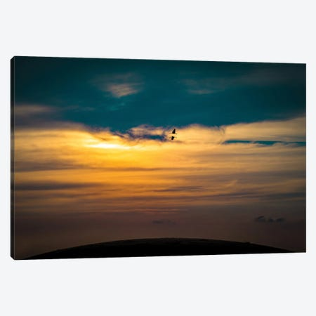Cranes In The Evening Sky Canvas Print #NRV180} by Nik Rave Art Print