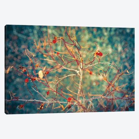 Golden Bush On A Navy Blue Silver Background Canvas Print #NRV198} by Nik Rave Canvas Wall Art