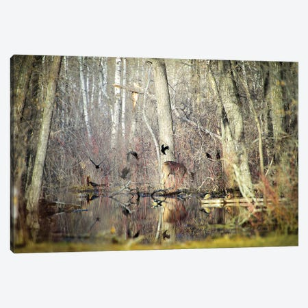 Deer Surrounded By Birds Canvas Print #NRV205} by Nik Rave Canvas Print