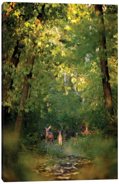 Deer Family In Forest Early Morning Painting Canvas Art Print