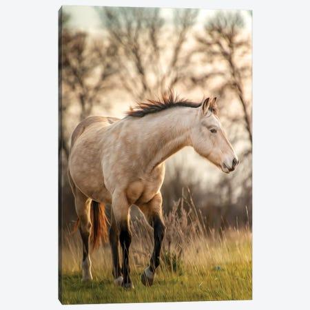 Grey Horse Portrait Painting Canvas Print #NRV261} by Nik Rave Canvas Art