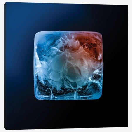 Ice Cube Canvas Print #NRV267} by Nik Rave Canvas Art Print