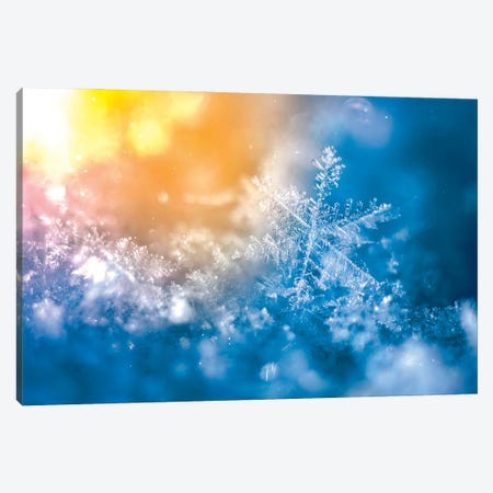Epic Snowflake On The Sun Canvas Print #NRV288} by Nik Rave Canvas Artwork