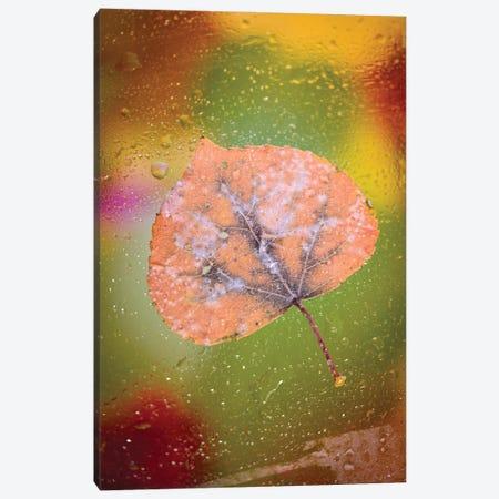 Frozen Leaf Canvas Print #NRV381} by Nik Rave Canvas Print