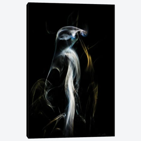 Penguin In The Smoke Canvas Print #NRV385} by Nik Rave Canvas Art